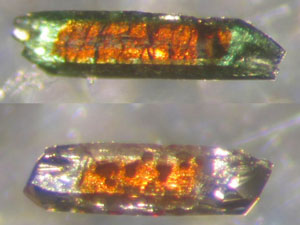 Üstte: Kobalt tabanlı kristal, nikel tabanlı kristal tarafından, Altta ise: Kobalt tabanlı kristal, çinko tabanlı kristal ile sarılmıştır.