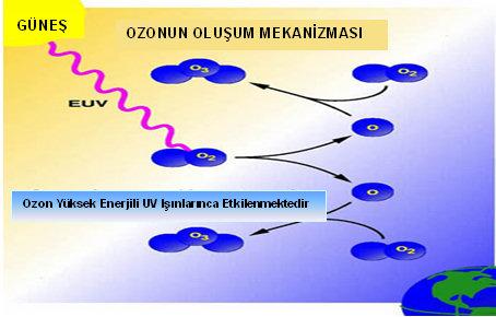 ozon5