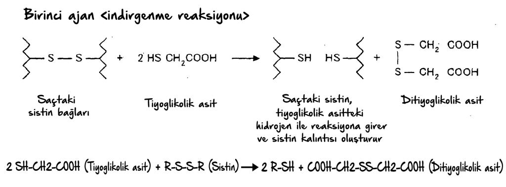 sistinindirgenmereaksiyonu